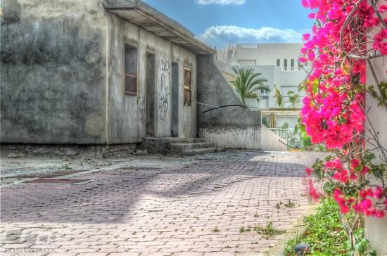 Wohnviertel: Arm und Reich in Tunesien
