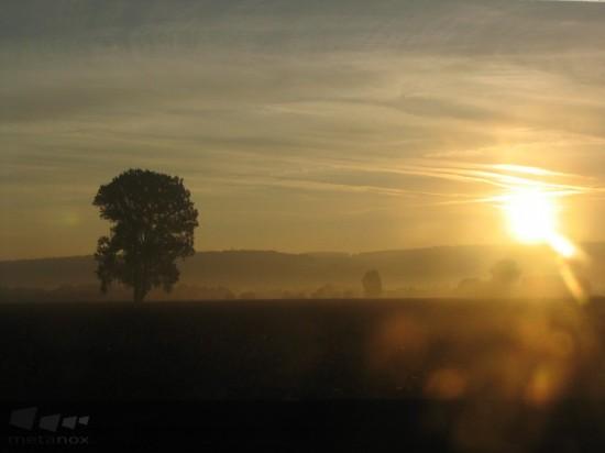 Sonnenuntergang an der Autobahn